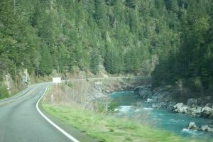 Redwoods Highway2